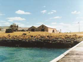 Mt Dutton Bay Woolshed Hostel - Accommodation Tasmania