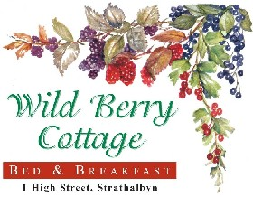 Wild Berry Cottage - Accommodation Tasmania