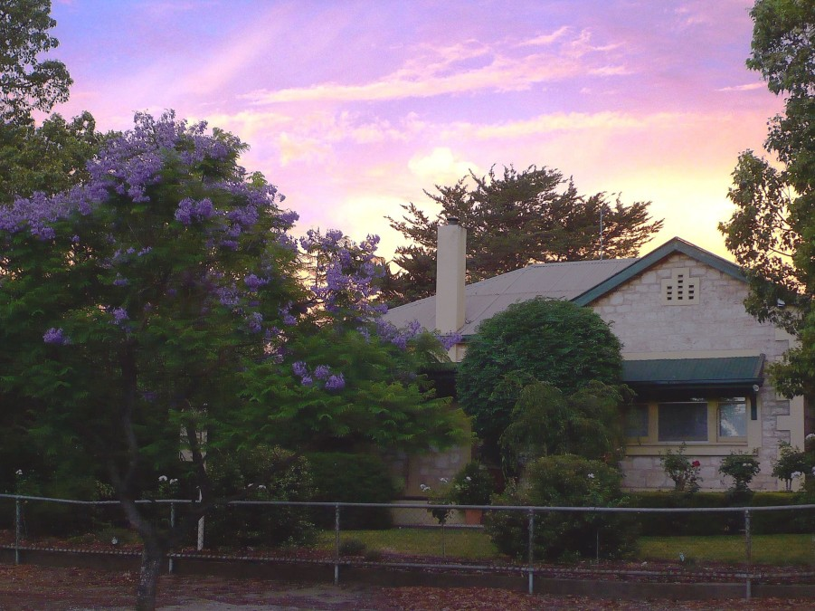 Angaston Rose BB - Accommodation Tasmania