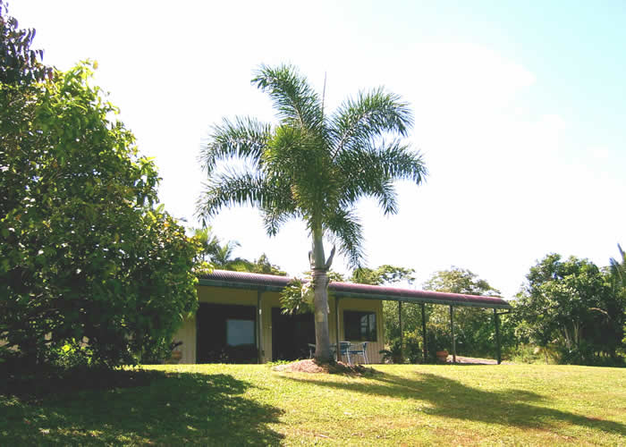 Daintree Mountain View Retreat and Vanilla Beans - Accommodation Tasmania