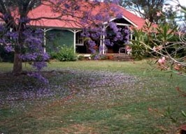 Minmore Farmstay Bed and Breakfast - Accommodation Tasmania