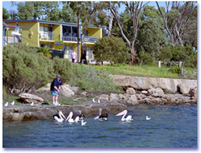 Almonta Holiday Apartments - Accommodation Tasmania