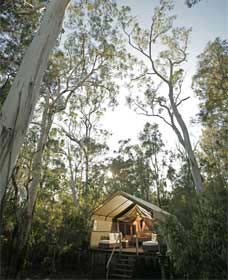 Paperbark Camp - Accommodation Tasmania