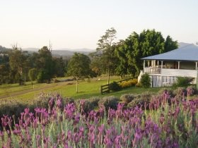 Blue Ridge Lavender Farm And Retreat - Accommodation Tasmania