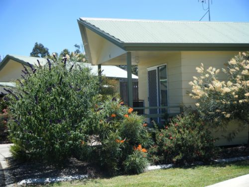 Pepper Tree Cabins - Accommodation Tasmania