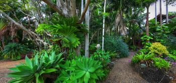 Maleny Tropical Retreat Balinese B&b