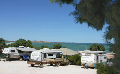 Blue Dolphin Caravan Park  Holiday Village - Accommodation Tasmania