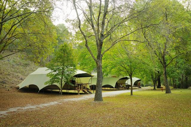 Buchan Caves Reserve - Accommodation Tasmania