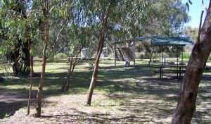 Coach and Horses campground - Accommodation Tasmania