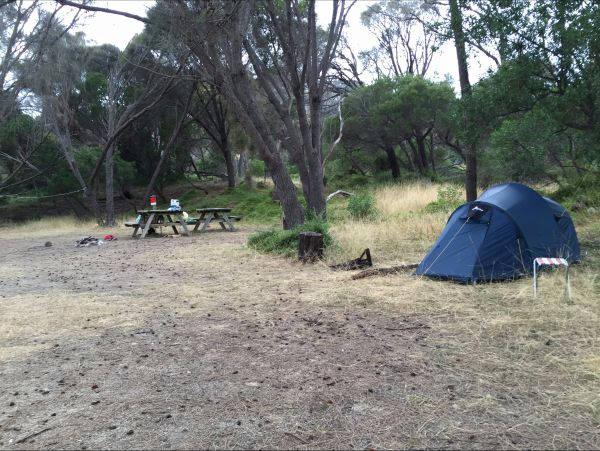 Allports Beach Camping Ground