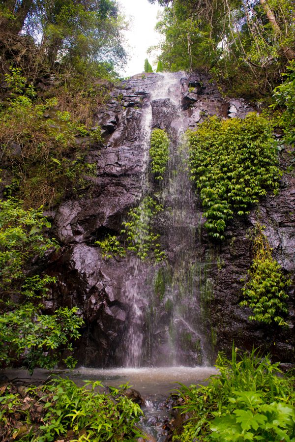 Nimbin waterfall retreat - Accommodation Tasmania