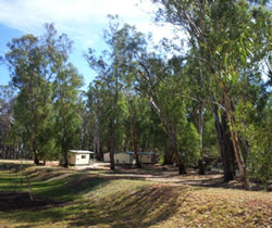 Balranald Caravan Park - Accommodation Tasmania