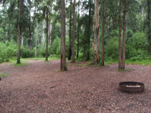 Murphys Glen campground - Accommodation Tasmania