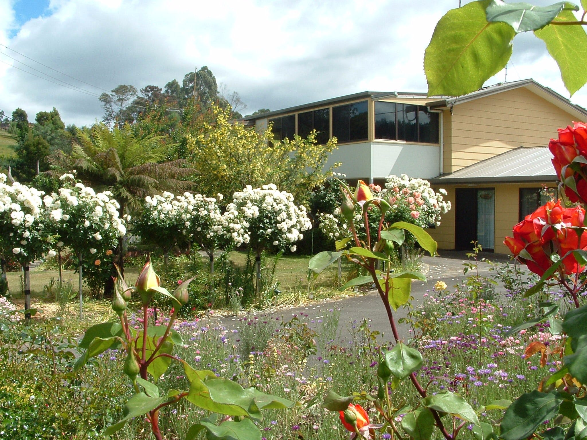 North East Restawhile Bed and Breakfast - Accommodation Tasmania