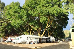 Williamstown Queen Victoria Jubilee Park - Accommodation Tasmania