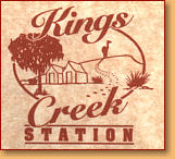 Kings Creek Station - Accommodation Tasmania