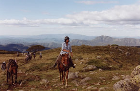 High Country Horses - Accommodation Tasmania