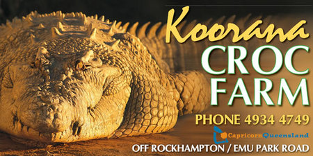 Koorana Saltwater Crocodile Farm - Accommodation Tasmania