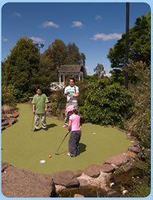 Wetlands Mini Golf - Accommodation Tasmania