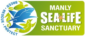 Manly SEA LIFE Sanctuary - Accommodation Tasmania
