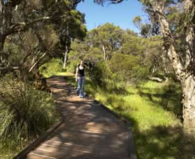 Leschenault Peninsula Conservation Park - Accommodation Tasmania