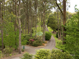 Mount Lofty Botanic Garden - Accommodation Tasmania