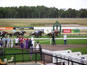Pinjarra Race Club - Accommodation Tasmania
