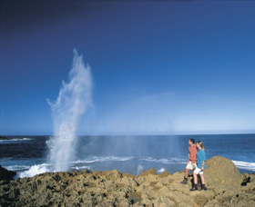 The Blowholes Carnarvon - Accommodation Tasmania