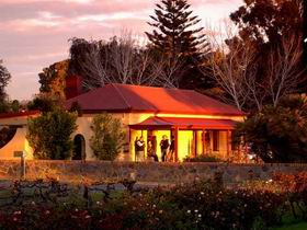 Elderton Wines - Accommodation Tasmania