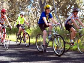 Penola Cycling Trails - Accommodation Tasmania