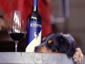 Koonara Wines - Accommodation Tasmania