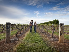 Coonawarra Wineries Walking Trail - Accommodation Tasmania