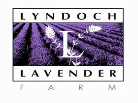Lyndoch Lavender Farm and Cafe - Accommodation Tasmania