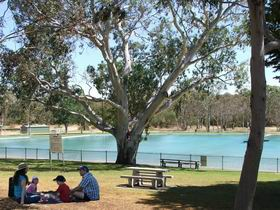 Naracoorte Nature Park and Swimming Lake - Accommodation Tasmania