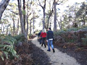 Bridport Walking Track - Accommodation Tasmania
