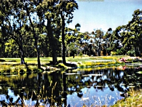 Smithton Country Club - Accommodation Tasmania
