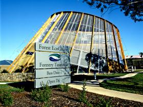 Forest EcoCentre - Accommodation Tasmania