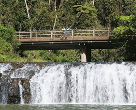 Malanda Falls Conservation Park - Accommodation Tasmania