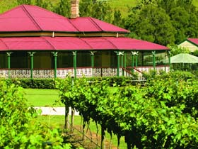OReillys Canungra Valley Vineyards - Accommodation Tasmania