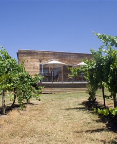 Shantell Vineyard - Accommodation Tasmania