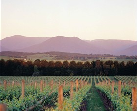 Domaine Chandon - Accommodation Tasmania