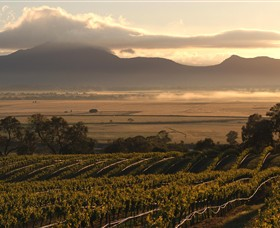 Montara Wines - Accommodation Tasmania