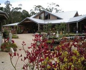 Kuranga Native Nursery and Paperbark Cafe - Accommodation Tasmania