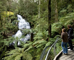 Great Otway National Park - Accommodation Tasmania