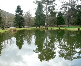 Mountain Fresh Trout and Salmon Farm - Accommodation Tasmania