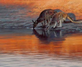 Steve Morvell Wildlife Art - Accommodation Tasmania