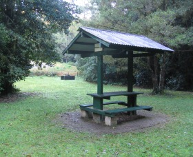 Pine Creek State Forest - Accommodation Tasmania