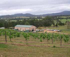 Villa d Esta Vineyard - Accommodation Tasmania