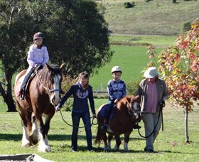 Bathurst Farm Experience - Accommodation Tasmania