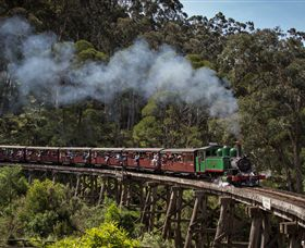 Puffing Billy Steam Railway - Accommodation Tasmania